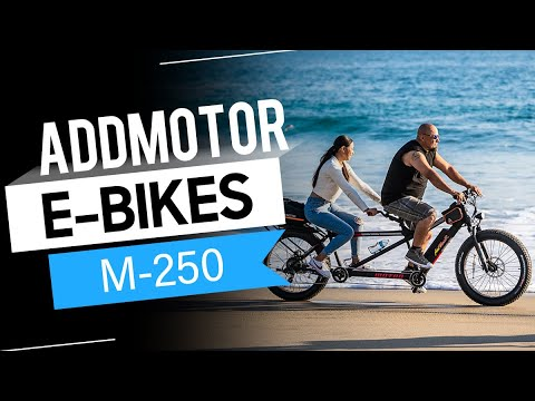 Addmotor MOTAN M-250 750W Electric Tandem Bicycle for Two People