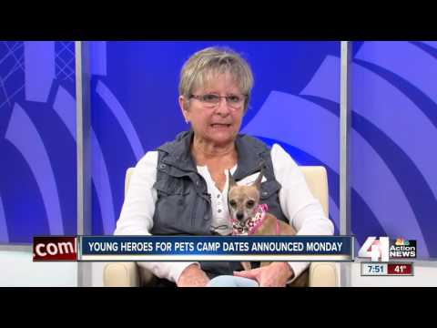 Young heroes for pets camp dates announced monday