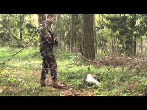 Video: Gyvūnų žudikai - su jais reikia elgtis taip pat, kaip jie elgiasi su gyvūnais