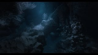 Narcosis - Official Gameplay Trailer