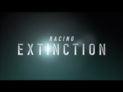 Racing Extinction 2015 documentary movie play to watch stream online