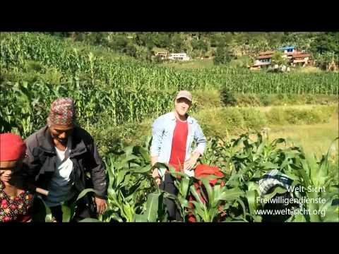 Welt-Sicht Projekt: 341132 Landwirtschaft in Nepal