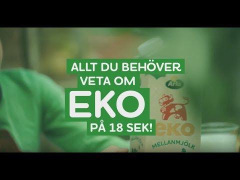 Allt du behöver veta om Eko på 18 sek!