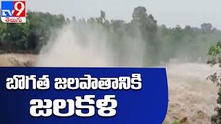 Bogatha Waterfalls : బొగత జలపాతానికి జలకళ - TV9 - TV9