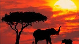 Kenya Adventure Travel