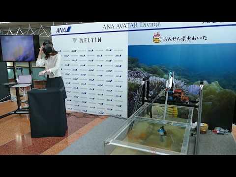 メルティンMMIによるヒオウギ貝採り ANA AVATAR VISIONオープニング