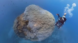 360度全景影片-綠島大香菇鋼鐵礁