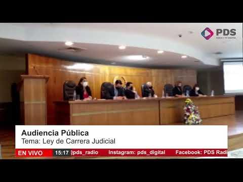Audiencia Pública- Oscar Fernandez Representante de la Coordinadora de Actuarios Judiciales