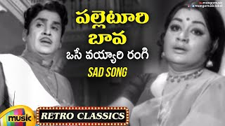 Osey Vayyari Rangi Sad Song Full Video | Evergreen Telugu Hit Songs | Palletoori Bava Movie | ANR - MANGOMUSIC