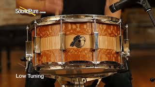 Pork Pie 7x14 Maple Snare Drum Lacewood/Curly Maple Quick 'n' Dirty