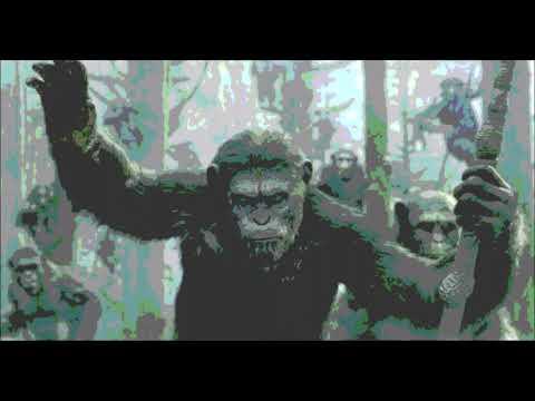 BIG-NOSE-SQUARE-FACE---ลิง-(Pr