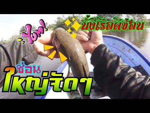 เทคนิคตีปลายางแบบใหน-ให้ปลาช่อ