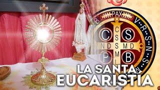 LA SANTA MISA (Martes 2 de Junio) - Padre Bernardo Moncada