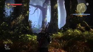 Ведьмак 2: Убийцы королей - геймплей