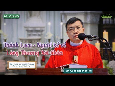 Bài giảng của Lm. GB Phương Đình Toại, MI trong thánh lễ Thánh Luca, tác giả sách Tin mừng