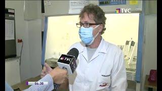 Estudio investiga pre inmunidad de personas al Covid-19