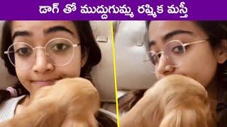 Rashmika Mandanna Dog Playing With Her Hairs | Cute Puppy Dog | Rajshri Telugu - RAJSHRITELUGU