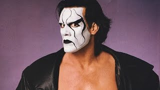 Sting Talks About His WWE Future - Comic Con 2014