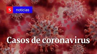 Casos de coronavirus en Colombia septiembre 20: más de 765.076 contagios oficiales | Semana Tv