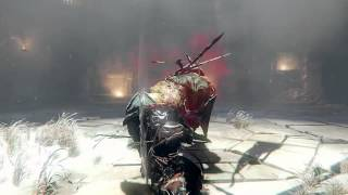 Lords of the Fallen Champion Lord Boss Battle