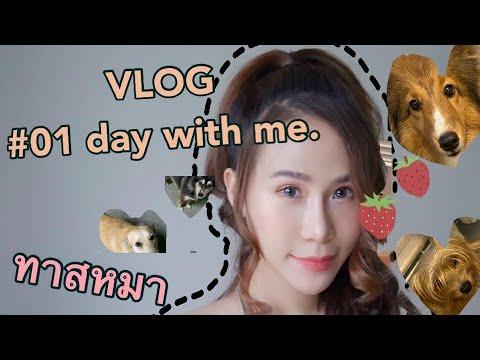 Vlog01อยู่บ้าน-การใช้ชีวิตใน1ว