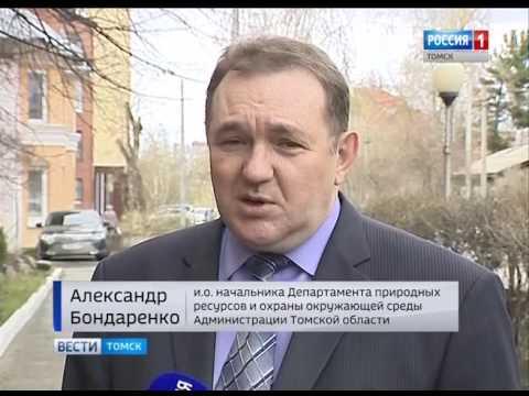 Вести-Томск, выпуск 14:40 от 3.05.2017