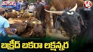 బక్రీద్ బకరా లక్షన్నర   Goat Costing 1.5 Lakh On Offer for Bakrid Celebrations   V6 Teenmaar News - V6NEWSTELUGU