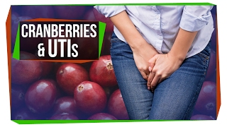 The Truth About Cranberry and UTIs