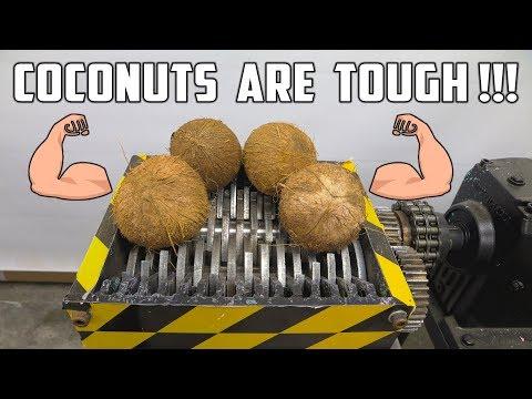 connectYoutube - Shredding 4 Coconuts