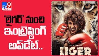 Liger Movie : ఆసక్తిరేపుతున్న క్రైమాక్స్ సీన్ అప్డేట్! - TV9 - TV9