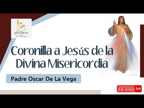 CORONILLA A JESÚS DE LA DIVINA MISERICORDIA - 28 DE JULIO 2021