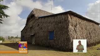 Cuba: Destaca campesino por la calidad y variedad de sus producciones en Sancti Spíritus