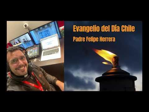 Escucha la reflexión del Evangelio de hoy del padre Felipe Herrera