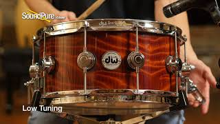 DW 6.5x14 Collectors Exotic Maple Snare Drum, Redwood Stump Quick 'n' Dirty