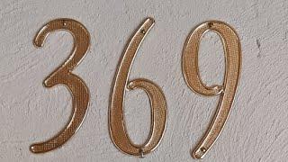 369 DE TESLA GATICO VIP#1. 30/07/2020