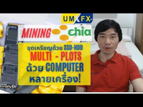 ขุดเหรียญ-Chia-สร้าง-Multi-Plo