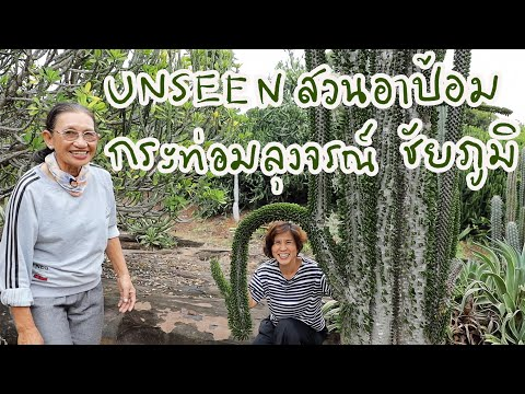 UNSEEN-สวนแคคตัสของอาป้อม-กระท