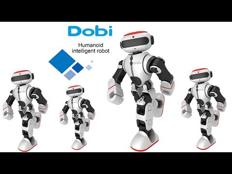 Dobi Intelligent Humanoid Robot With Dance, Yoga & Storytelling Performance.