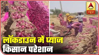 Onion farmers upset as rates plunge to Rs 12 per kg - ABPNEWSTV