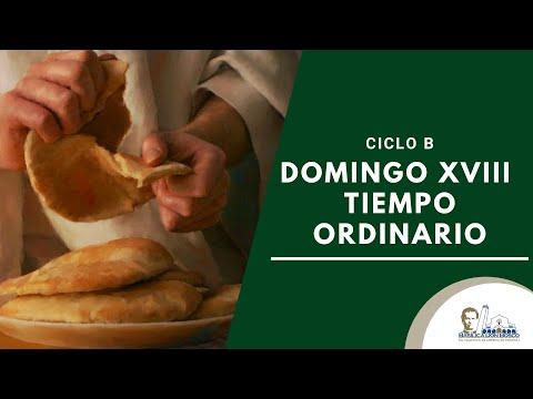Misa Matutina - Domingo de la semana XVIII del Tiempo Ordinario.