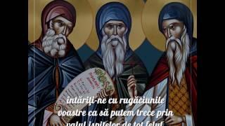 Rugăciune către Sfinții Cuvioși Sila, Paisie și Natan de la Sihăstria Putnei