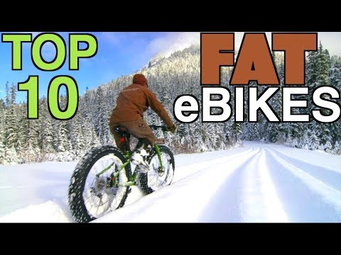 Top 10 Best Fat Tire eBikes for Sale