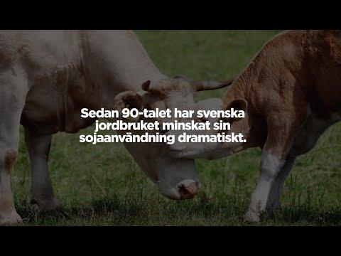 Svenskt kött för biologisk mångfald och ett levande landskap