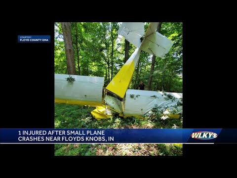 Pilot was headed to private landing strip before crashing plane in southern Indiana