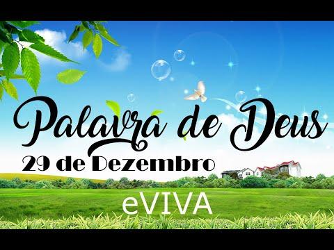 PALAVRA DE DEUS PARA HOJE 29 DE DEZEMBRO eVIVA MENSAGEM MOTIVACIONAL PARA REFLEXÃO DE VIDA