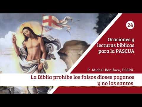 24 La Biblia prohibe los falsos dioses paganos y no los santos