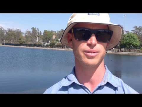 Shepparton's Victoria Park Lake clean up March 2017