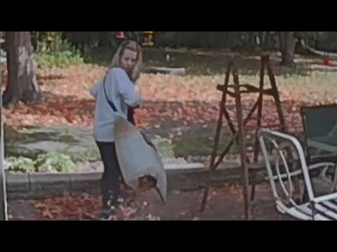 Woman Unwittingly Vacuums Leaves Into Open Bag Scattering It All Over The Patio