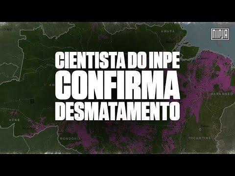 Desmatamento é confirmado por coordenador do Programa Amazônia do Inpe, Claudio Almeida
