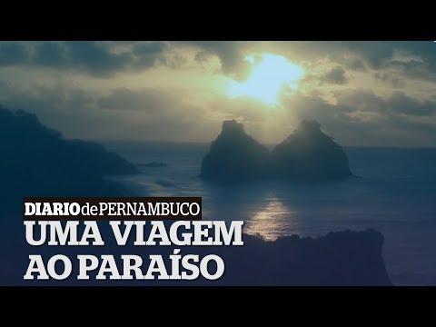 Fernando de Noronha: o destino certo para encontrar o paraíso
